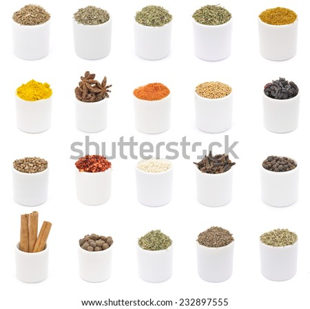 Different spices in white ceramic cups - isolated - stock photo