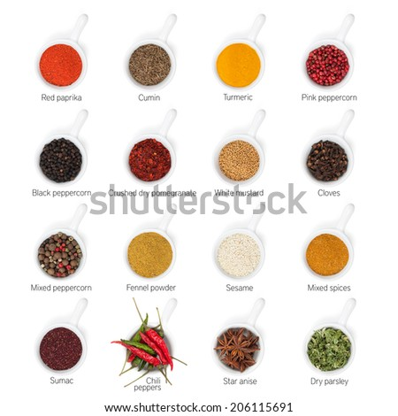 Different spices. Isolated on white background - stock photo