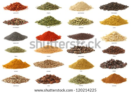 Different spices isolated on white background. Large Image - stock photo