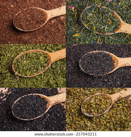 Different tea types: green, black, chamomile, mint, rooibos with wooden spoons - stock photo