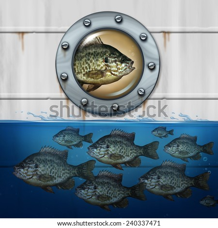 Different thinking business concept as a group of fish swimming in water with an individual nonconformist hitching a ride in a ship as a metaphor for out of the box strategy for success. - stock photo