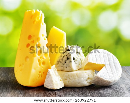 Different types of cheese on a black wooden table and on nature background. Maasdam cheese, Brie, Parmesan cheese, Gouda and blue cheese Roquefort. Organic healthy food rich in calcium and minerals. - stock photo
