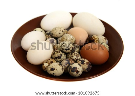 Different types of eggs  on a white background - stock photo