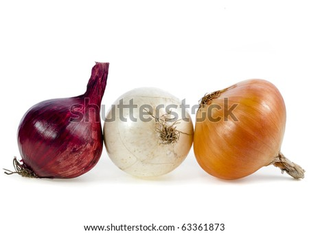 different types of fresh onions isolated on white background - stock photo