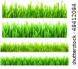 Different types of green grass isolated on a white background - stock photo