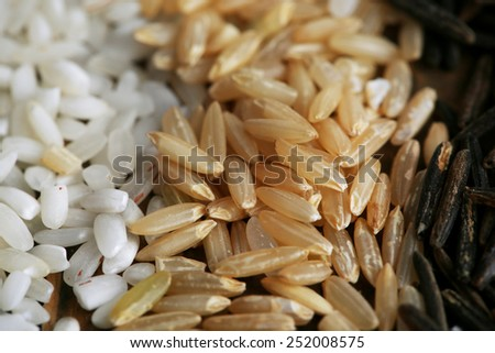 Different types of rice close up - stock photo