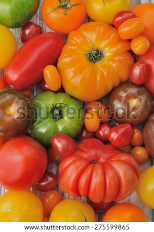 different varieties of  colorful tomatoes forming a background