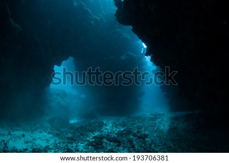 Diffused sunlight filters down into the cracks, crevices and holes in a coral reef on the island of Grand Cayman. Many reef species prefer the shadows of these dark areas. - stock photo