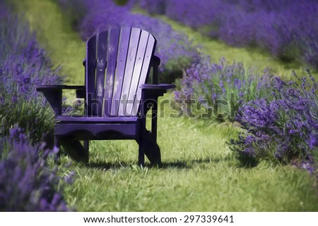 Painted Adirondack Chairs Stock Images Royalty Free
