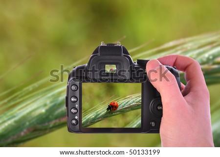 Digital camera in hand - stock photo