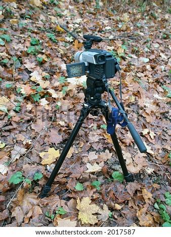 Digital camera recording autumn colors, close-up - stock photo