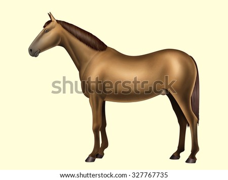 Digital illustration: body parts of the horse Isolated on yellow No text