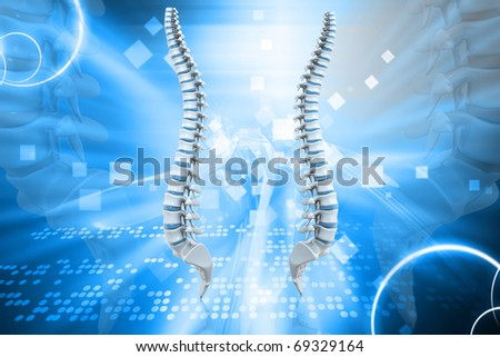 Digital illustration Human spine in colour background - stock photo