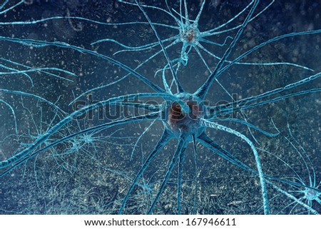 digital illustration neurons - stock photo