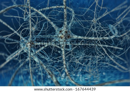 digital illustration neurons of the human brain - stock photo