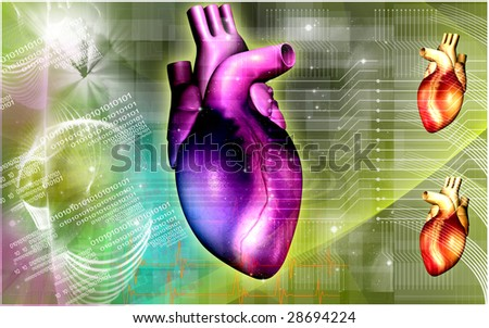 Digital illustration of a heart  in colour	 - stock photo