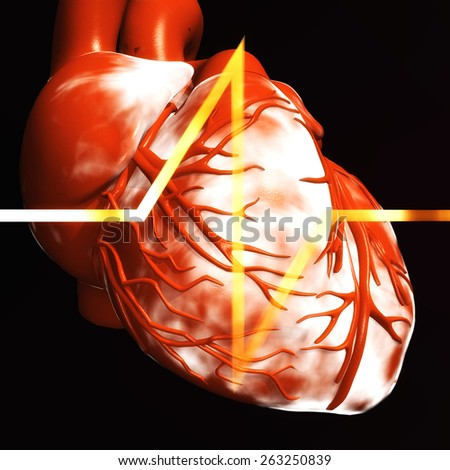 Digital Illustration of a human Heart - stock photo