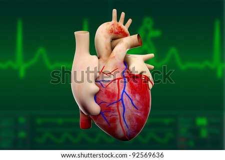 digital illustration of a human heart in green background - stock photo