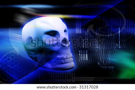 Digital illustration of a human skull