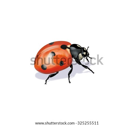 Digital illustration of a ladybug