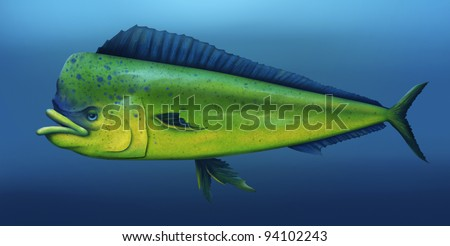 digital illustration of a mahi mahi fish swimming in the ocean - stock photo