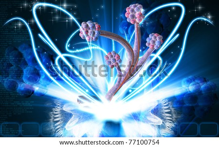 Digital illustration of  alveoli  in  colour  background