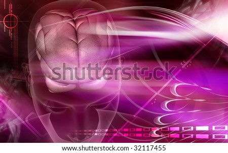 Digital illustration of brain in blue colour	 - stock photo