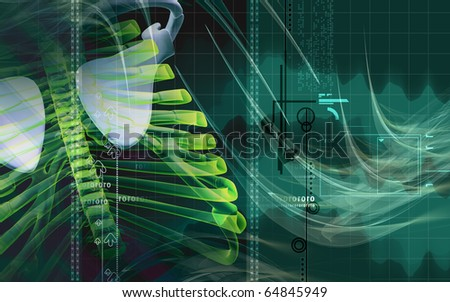 Digital illustration  of collar bone in    colour background