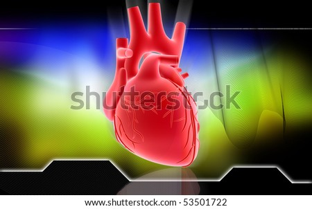 Digital illustration of  heart  in colour  background