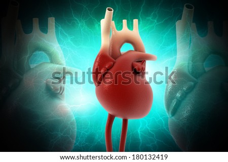 Digital illustration of human heart in colour background - stock photo