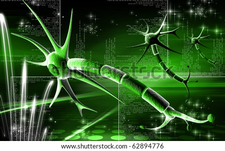 Digital illustration of  neuron  in colour  background