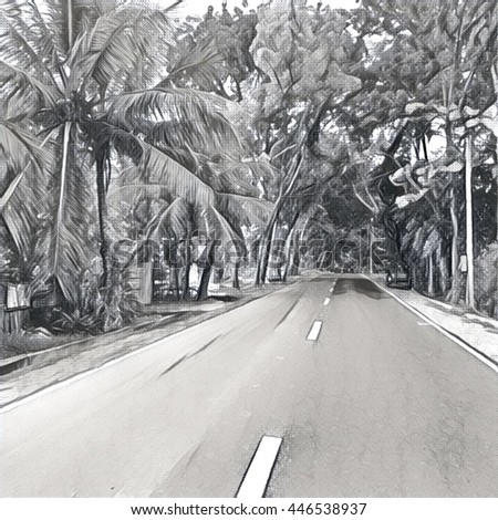 Digital illustration of road in the tropical forest black and white monochrome sketch by graphite