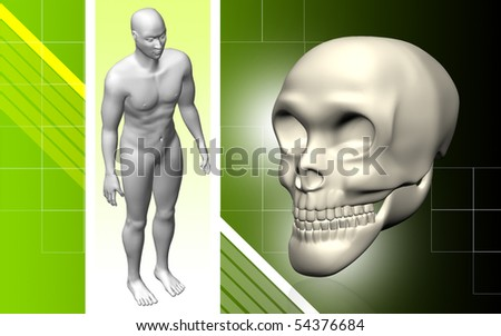 Digital illustration  of  skull and human body in   colour  background