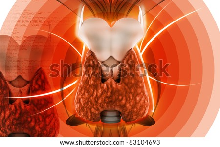 Digital illustration of  thyroid in colour  background - stock photo