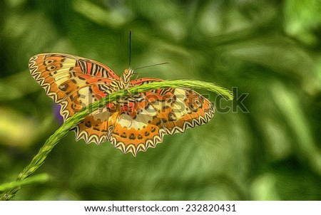 Digital oil painting of Choir Lacewing Butterfly - stock photo