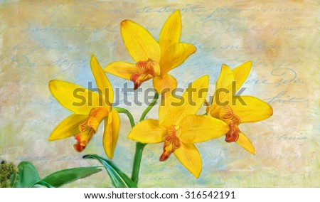 Digital oil painting of multicolored dendrobium orchids against textured background