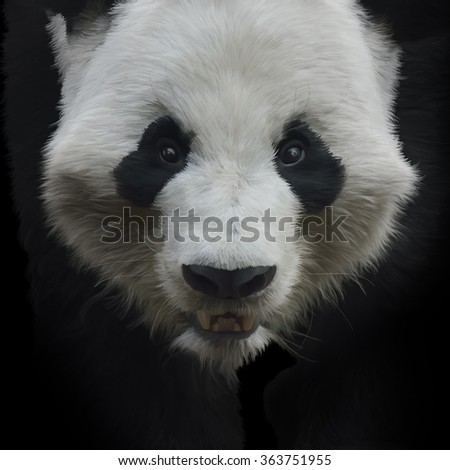 Digital Painting of Giant Panda Bear on Black Background - stock photo