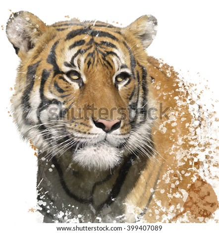 Digital Painting of Tiger Portrait  - stock photo