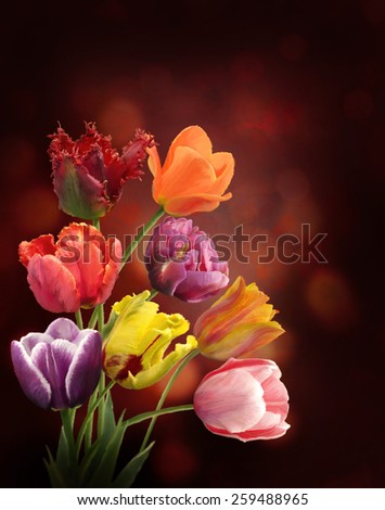 Digital Painting Of  Tulip Flowers - stock photo