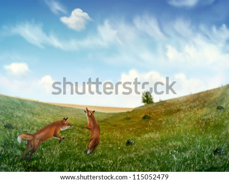 digital painting of two wild foxes playing in a rolling field of grass under a cloudy blue sky - stock photo
