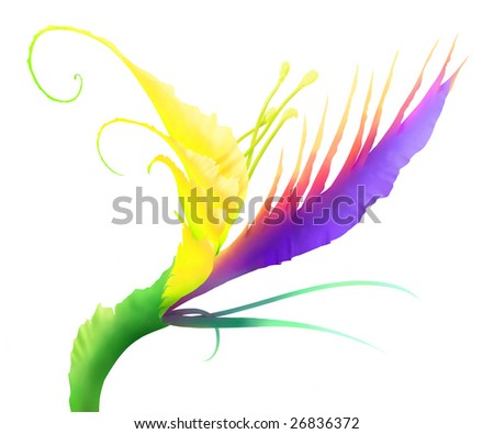 Digital painting - unreal exotic flower in colorful style; isolated on white background - stock photo