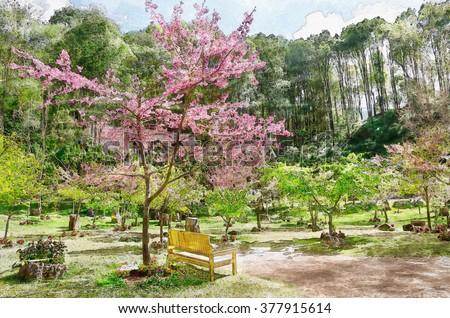 Digital Painting Watercolor Of Beautiful Pink Flower Of Sakura, Cherry  Blossom, Japanese Flowering Cherry