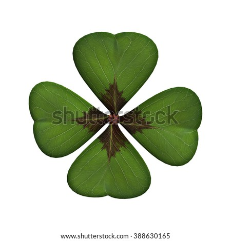 Digital render of a lucky clover leaf or shamrock isolated on white background - stock photo