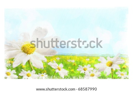 Digital watercolor of large shasta daisies in field with clouds and sky - stock photo