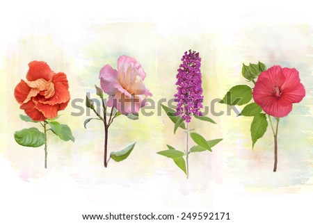 Digital Watercolor Painting Of Flower Background - stock photo