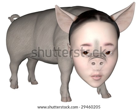 Digitally created mixed girl head on a rendered pig over white.