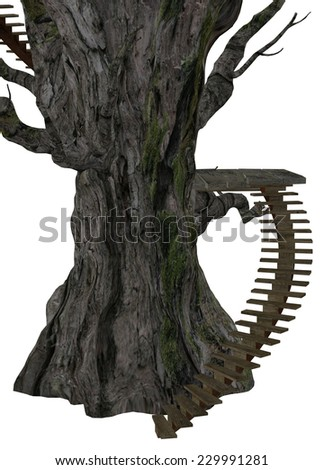 Digitally rendered illustration of an old tree with stairs on white background. - stock photo