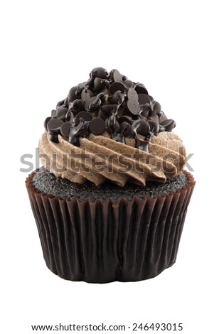 Dilicious chocolate cupcake in isolated background. - stock photo