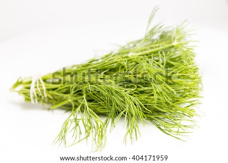 dill on a white background - stock photo