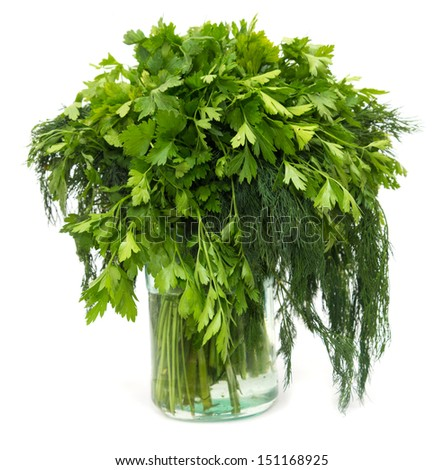 dill with parsley on a white background - stock photo